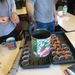 Students' seedlings with biochar