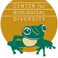 by Kristin Kokal I recently finished my science internship with the Center for Biological Diversity's San Francisco office (the Center). Although my internship focused mainly on research and writing, I […]