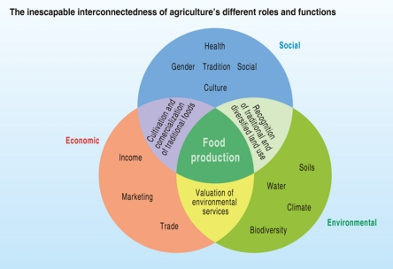 a-multifunctional-perspective-of-agriculture_001