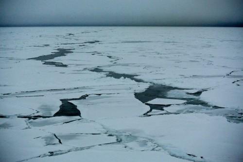 Sea ice!
