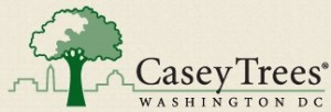 Casey Trees logo. www.caseytrees.org.