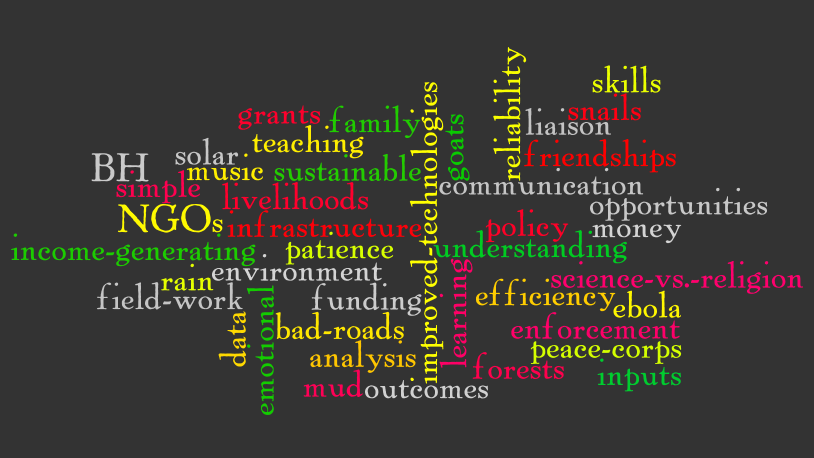Peace Corps Cameroon Wordle