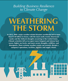 Image: Weathering the Storm. A report compiled as part of the Business Resilience program.