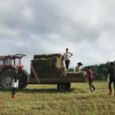 By Diego Callenbach Working on a farm across the world in Japan was truly something I had never imagined doing in my entire life prior to the second semester of […]